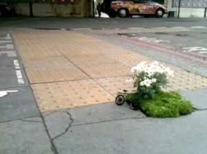 guerrilla gardening of hope